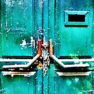 Closed green Door by TCL-Cologne