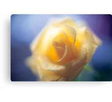 Anniversary Rose Canvas Print