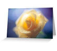 Anniversary Rose Greeting Card