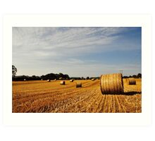 Hay Bales in Donegal Art Print
