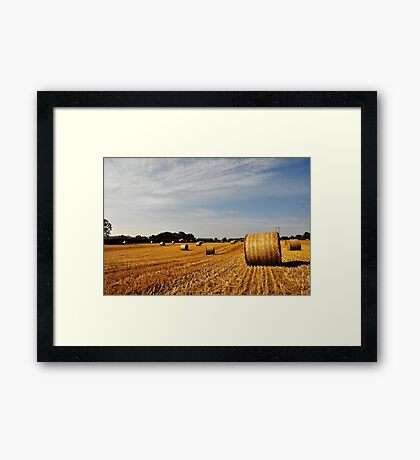 Hay Bales in Donegal Framed Print