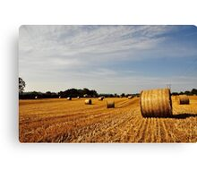Hay Bales in Donegal Canvas Print