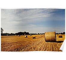 Hay Bales in Donegal Poster