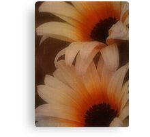 Keepsakes For The Heart.... Canvas Print
