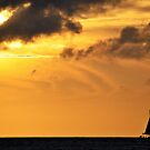 Sailing by Cricket Jones