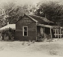 House in the country by adbetron