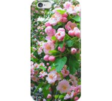 Spring Blossoms-Art Prints-Mugs,Cases,Duvets,T Shirts,Stickers,etc iPhone Case/Skin