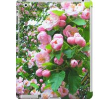 Spring Blossoms-Art Prints-Mugs,Cases,Duvets,T Shirts,Stickers,etc iPad Case/Skin