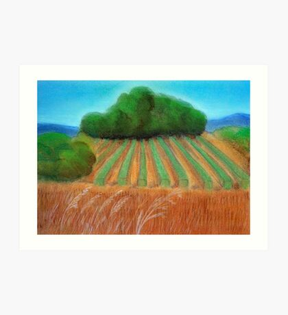 Annie's vineyard Art Print