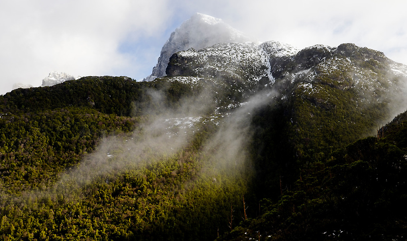 A Snow Dusted Frenchmans Cap by Michael Gay