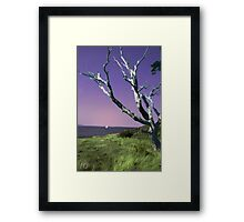 Desolate Tree (colorized) Framed Print