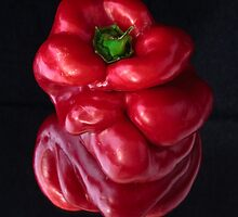Red Capsicum by John Quixley