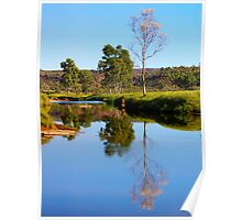 Finke River at Palm Valley Poster