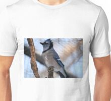 Blue Jay(Cyganocitta Cristata) Unisex T-Shirt