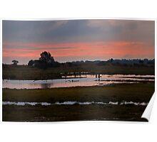 Wetlands at Dusk Poster