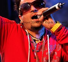 Jazzy B - 9 by orion976