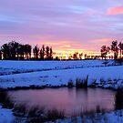 Winter Dawn In Tasmania by Asoka