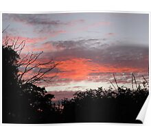 sunset along tiverton Canal Poster