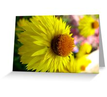 Macro Garden view Greeting Card