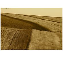 ♥ ♥ ♥ ♥ series. Galicia  -  Lesser Poland  -  landscape . Brown Sugar Book Story. Music by Fryderic Chopin  - Fantasie Impromptu . Fav 1 Views: 1501 . thx!  featured in Brain Science, Brain Arts. Photographic Print