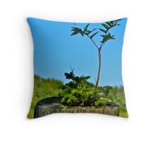 Birth of a Fencepost Throw Pillow