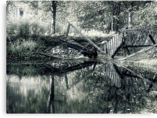 17.9.2010: Garden of Oblivion by Petri Volanen