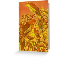 Parrots in the Sunset Greeting Card