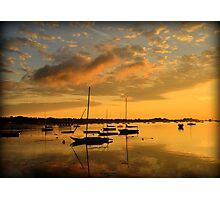 Point Abino Sunrise Photographic Print