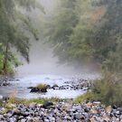Creek and mist by julie anne  grattan