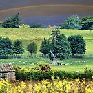 Somewhere Over The Rainbow, Way Up High..... by Sandra Cockayne