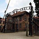 Auschwitz - Poland by Manuel Gonçalves