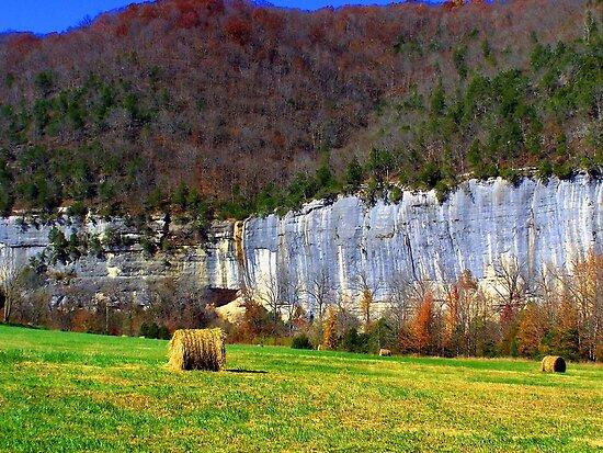 Steel Creek on Buffalo River, Arkansas by David  Hughes