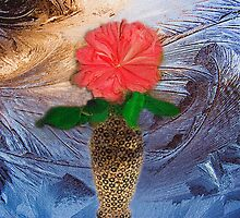 Midnight Rose by Linda Miller Gesualdo
