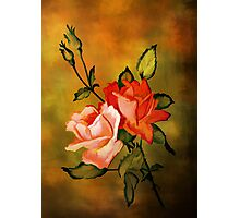 Rose,,,,,Rose.......!!!!!! Photographic Print