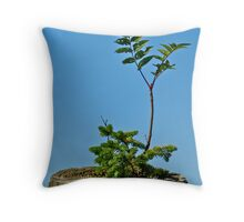 Birth of a Fencepost II Throw Pillow