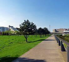 Thames Barrier Park by sampsd