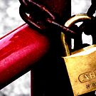 The gate...locked...please go around. by Paul Rees-Jones