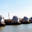 Thames Barrier - Closer by sampsd