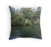 Tranquil Thames Throw Pillow