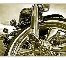 Harley - 1 by MoGeoPhoto