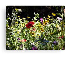 Wild Flowers - Iron Bridge Canvas Print
