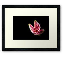 Fig  Framed Print
