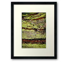 tree baby Framed Print