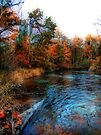Autumn Reflection In Bear Creek by Shelly Harris