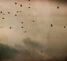 traveling birds by Daphne Kotsiani