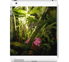 Fairy Land Nightscapes- Fairy Garden iPad Case/Skin