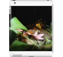 Fairy Land Nightscapes- Fairy Rock iPad Case/Skin