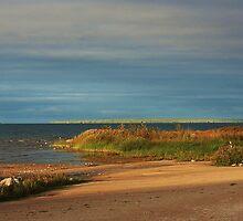 Mackinaw, Michigan by Darlene Virgin