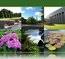Preston Temple Grounds in August Collage by BlueMoonRose