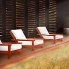 Malibu Lumber Yard by Erin Kanoa